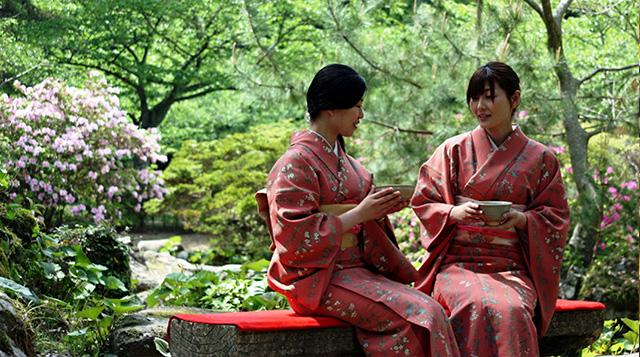画像:萩・大茶会