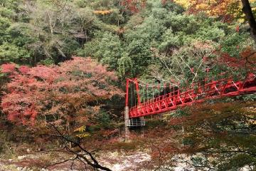 画像:吊橋