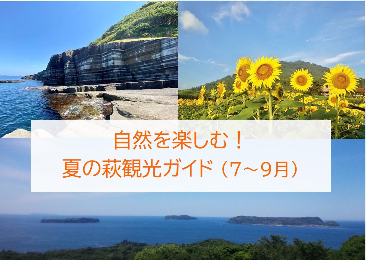 画像:自然を楽しむ!夏の萩観光ガイド(7~9月)