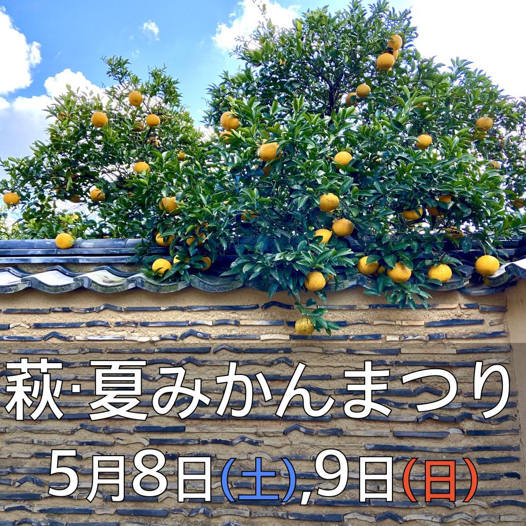 画像:萩・夏みかんまつり