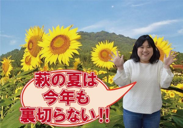 画像:萩の夏を楽しむ!観光ガイド(7~9月)